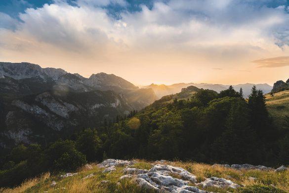 Sutjeska NP; Bosnia and Herzegovina