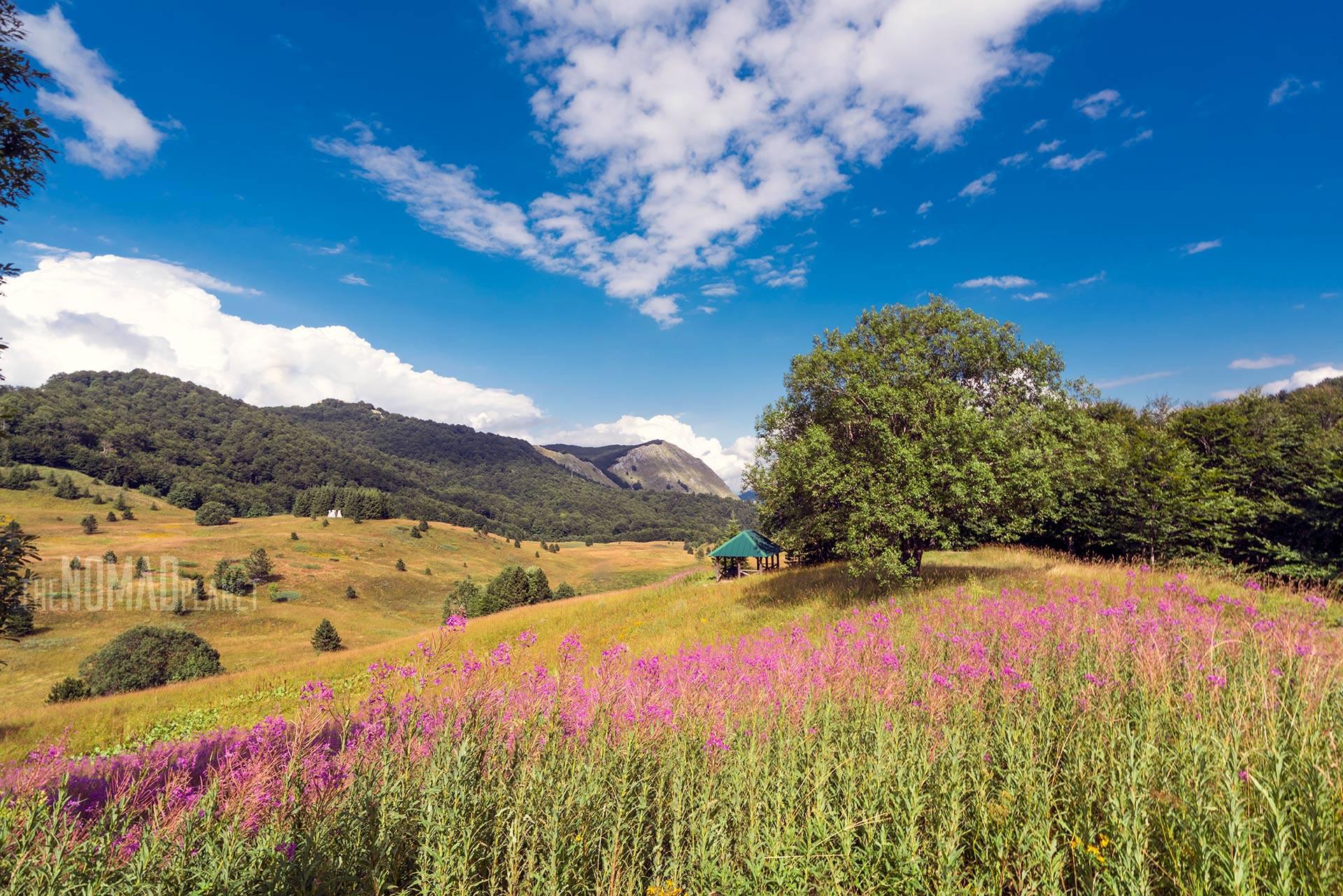 Valleys of Sutjeska NP, Bosnia